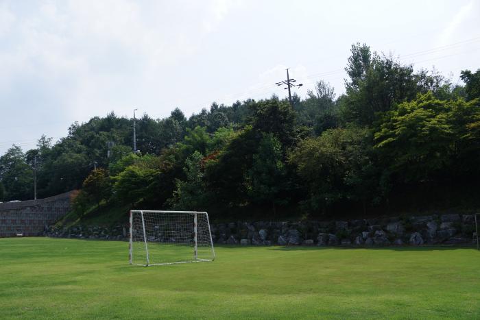 잔디축구장